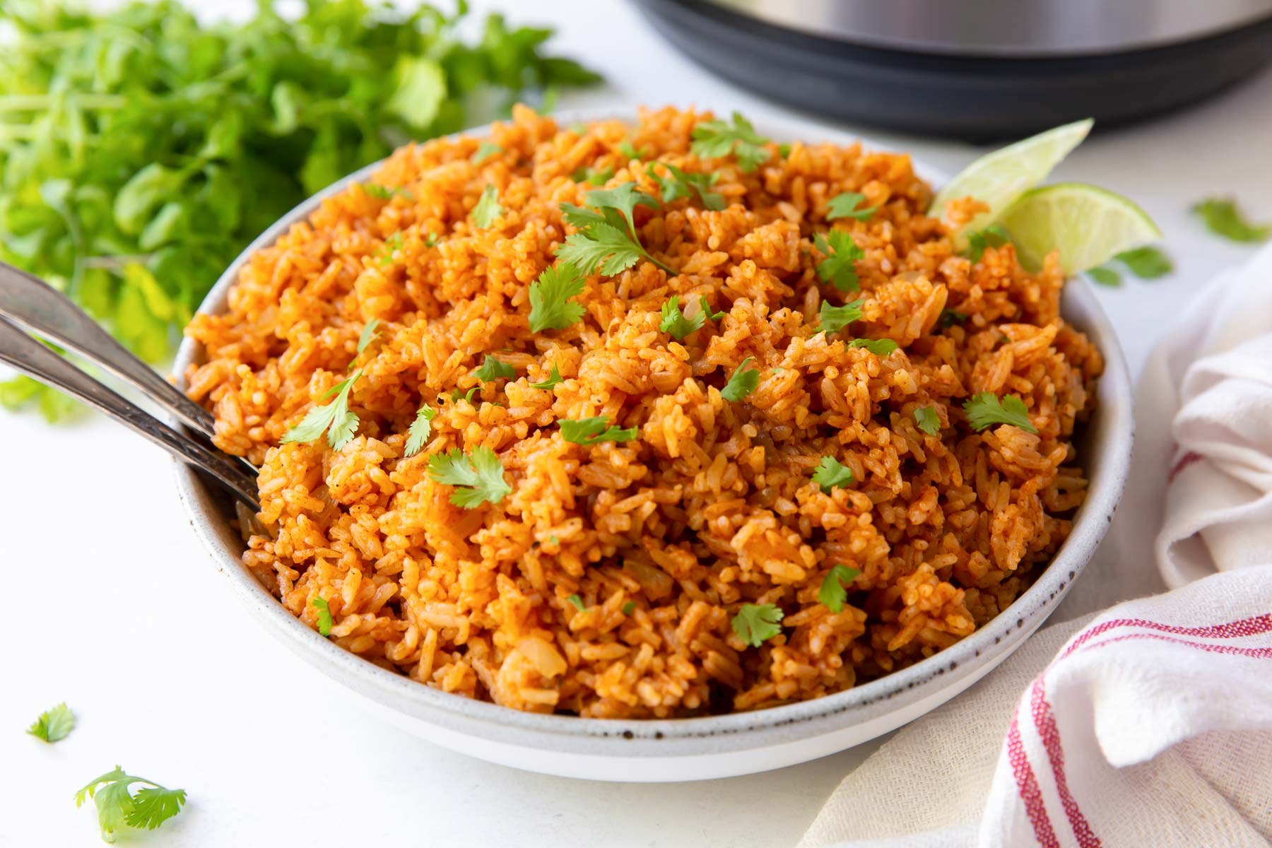 serving bowl filled with mexican rice with instant pot in background