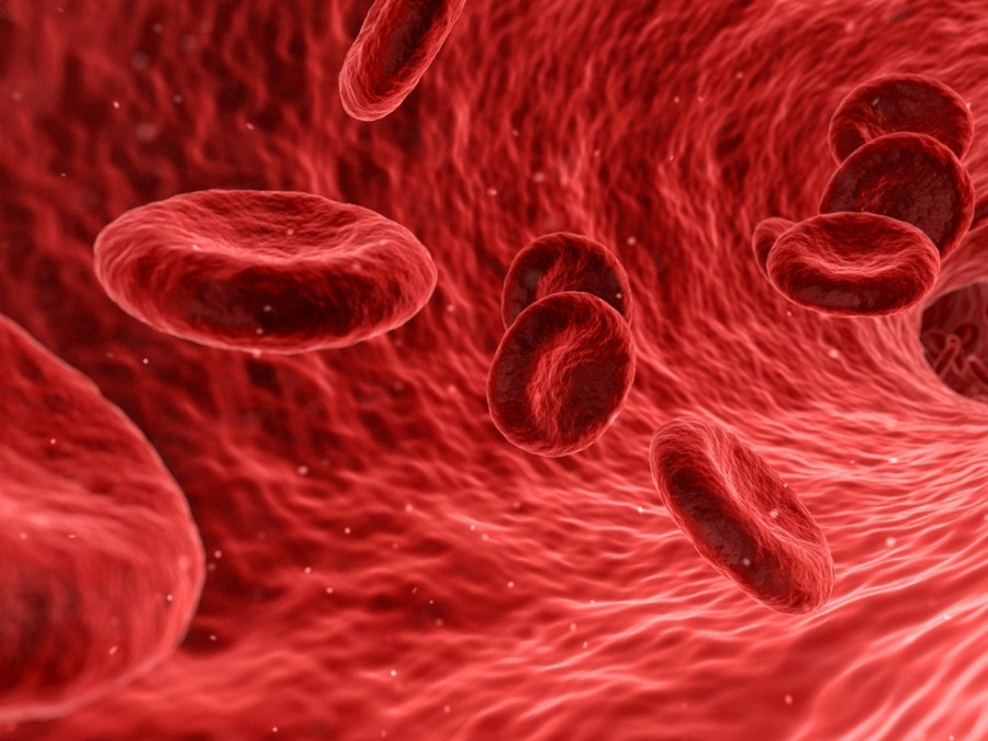 Does Eating By Your Blood Type Work?