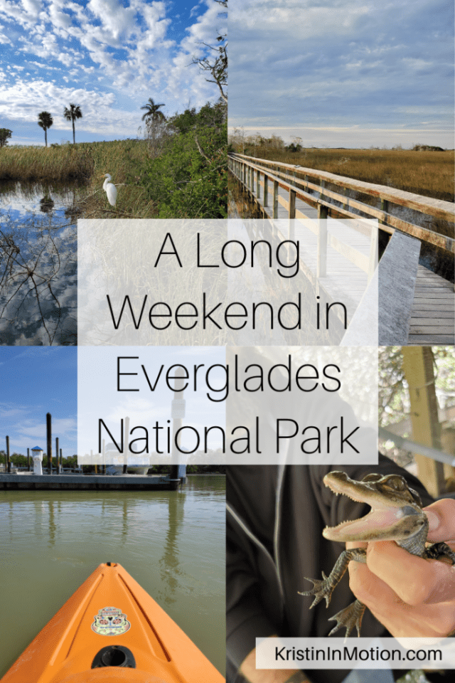 Everglades National Park is one of the largest parks to visit but you can get a great experience at the park in just one long weekend! Here's my guide to seeing the Everglades in a long weekend.