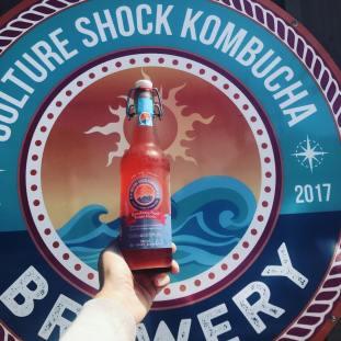 Image result for culture shock kombucha