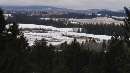 View from the deck today - the snow is almost gone after the rain last night