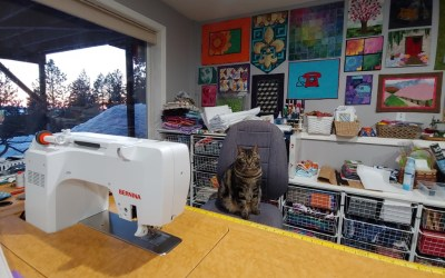 2019 Quilting and Sewing Recap