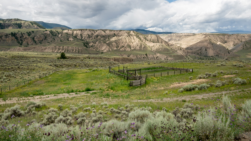 Cattle Yard at Churn Creek Protected Area