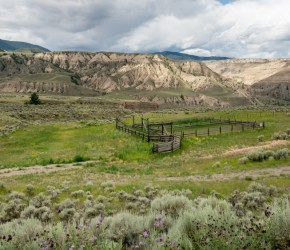 Old Cattle Yard at Churn Creek Protected Area
