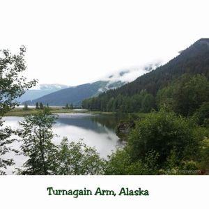 7-6-14 Turnagain Arm - Green
