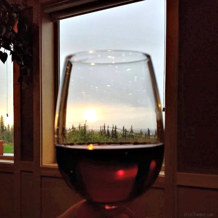 Talkeetna Lodge - The View