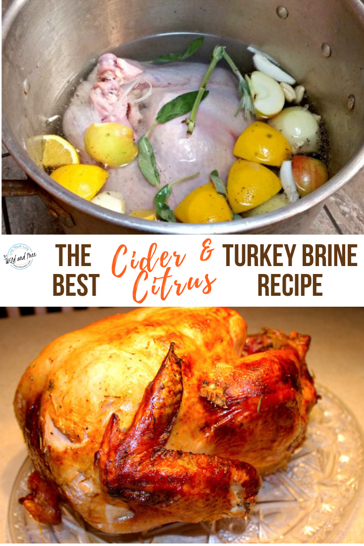 The Best Cider & Citrus Turkey Brine Recipe #turkeybrine #brinerecipe #citrusbrine