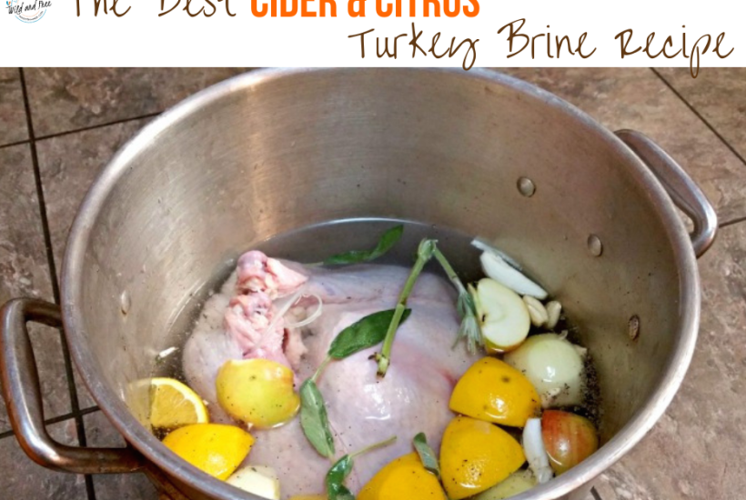 The Best Cider & Citrus Turkey Brine Recipe #turkeybrine #brine #brinerecipe