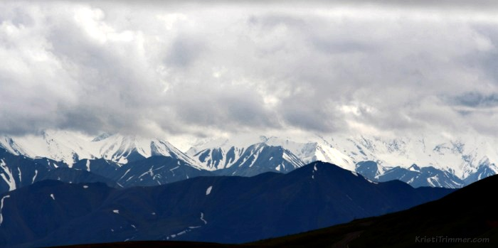 Denali National Park_2