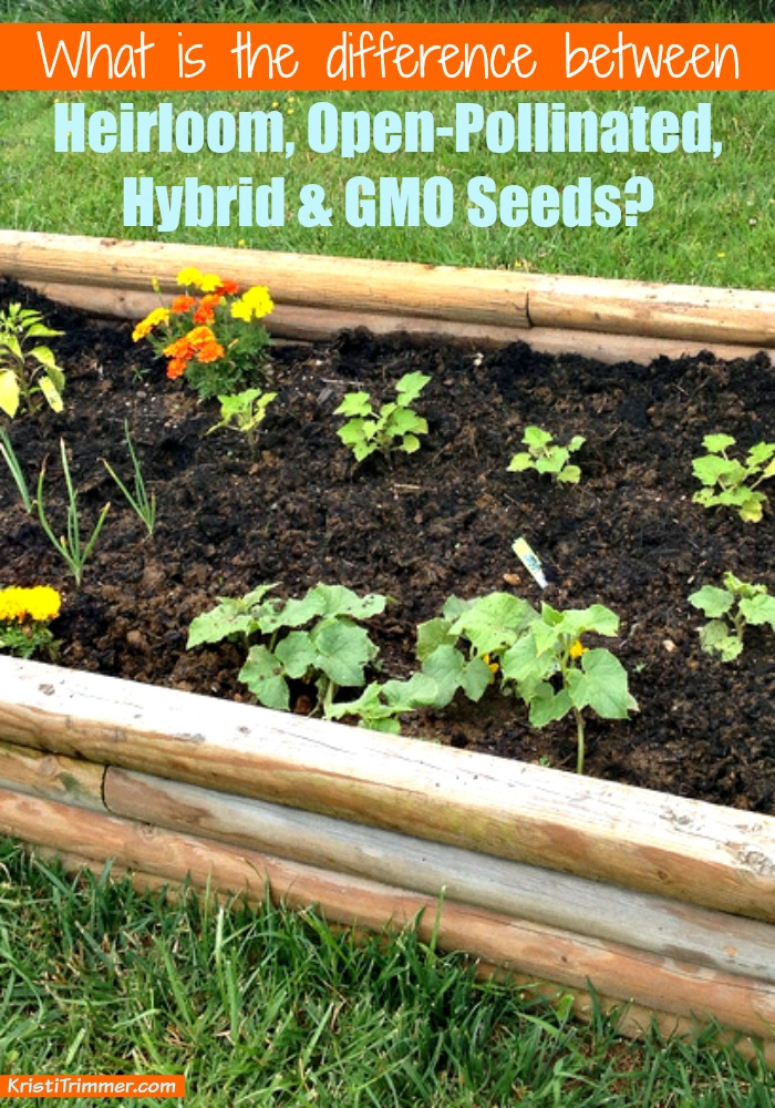 What is the Difference Between Seeds