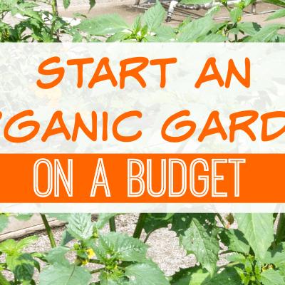 Start an Organic Garden on a Budget
