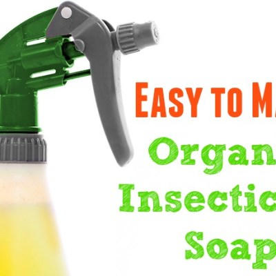 Easy to Make Organic Insecticide Soap