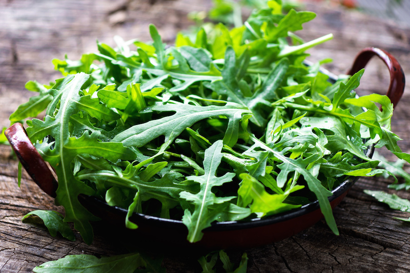 Grow Arugula in your garden easily this year #argula #gardening #gardeningtips