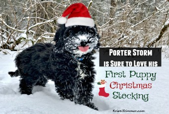 Porter Is Sure to Love his First Puppy Christmas Stocking