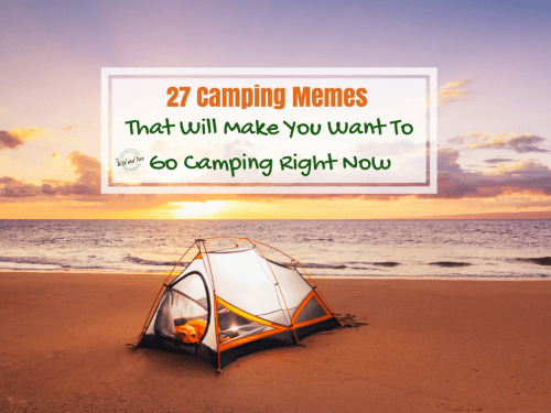 27 Camping Memes that will make you want to go camping right now