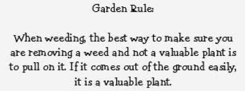 Garden Rule Meme