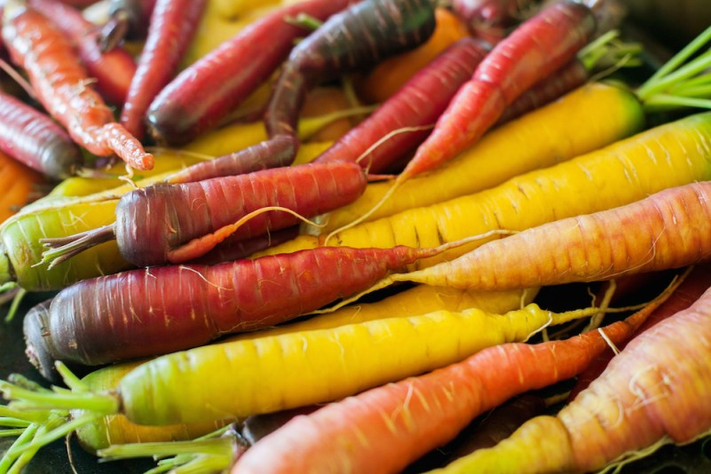 Growing Carrots from Seeds in Alaska #carrots #gardening #gardeningtips