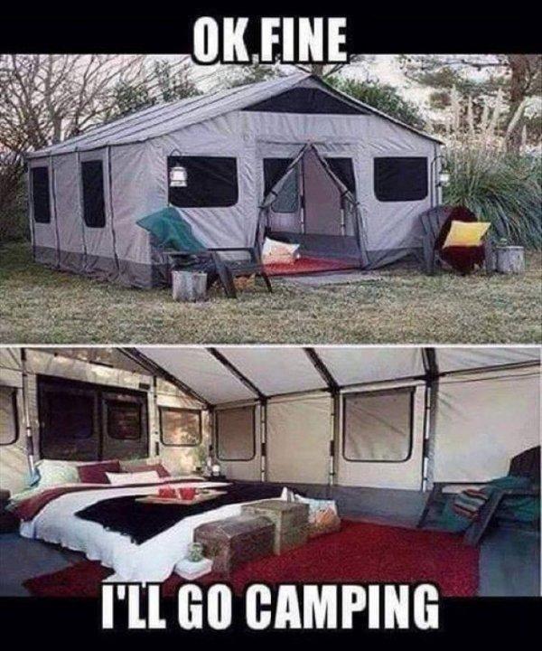 Ok fine, I'll go camping! #camping #glamping #campinglife