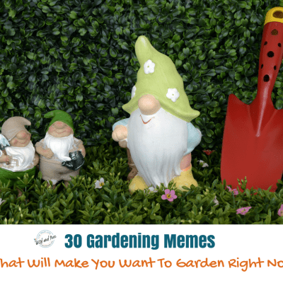 30 Gardening Memes That Will Make You Want To Garden Right Now
