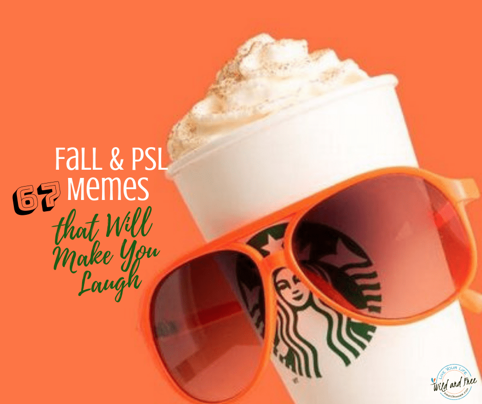 67 Fall & PSL Memes That Will Make You Laugh #fall #autumn #fallmemes #memes #funny