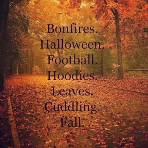 Fall is here! Time for bonfires, Halloween, football, hoodies, leaves, cuddling. Fall. #fall #autumn #fallmemes