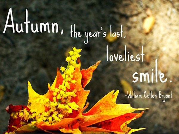 Autumn, the year's last loveliest smile. #fall #autumn #fallcolors #fallmemes #memes