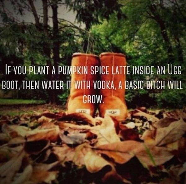 Just water will vodka and watch it grow! #autumn #fallmemes #psl #pumpkinspicelattes #uggs