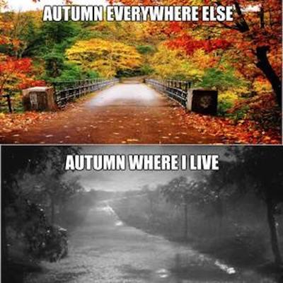 Autumn where I live #fall #autumn #fallmemes #memes #autumnwhereilive