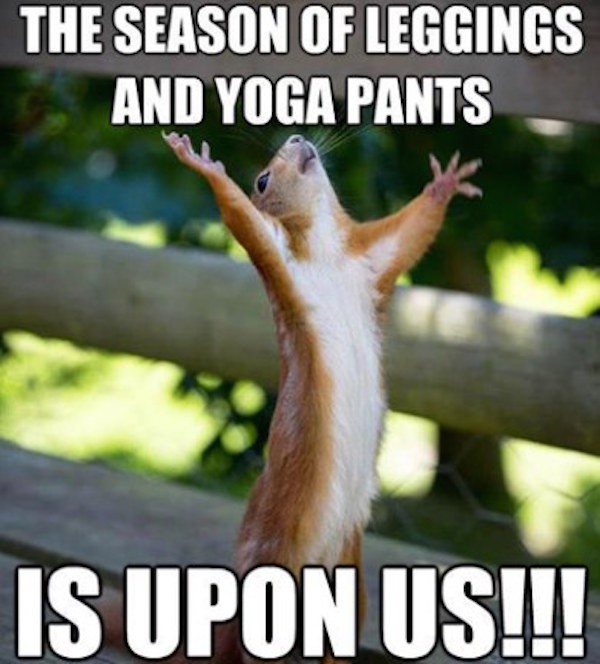 The season of leggings and yoga pants is upon us!! #fall #autumn #fallmemes #memes #leggings #yogapants