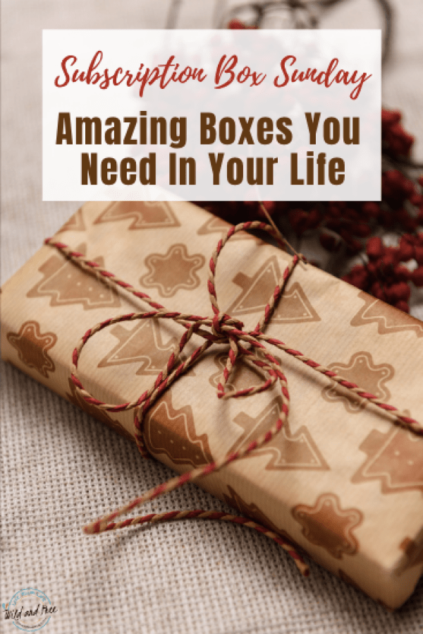 Subscription Box Sunday: Amazing Boxes You Need In Your Life #subscriptionbox #giftideas