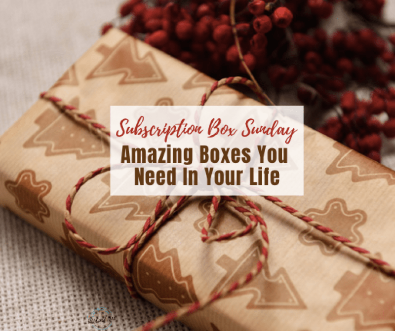 Subscription Box Sunday #subscriptionbox #subscriptionboxsunday