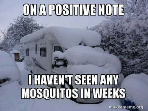 On a positive note, I haven't seen any mosquitos in weeks! #camping #campingmemes #wintercamping