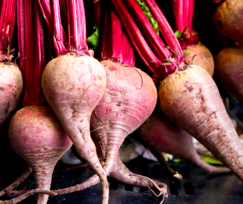 Plant beets now to harvest in the fall