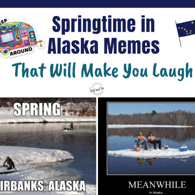 Spring Time in Alaska – Memes that Will Make You Laugh