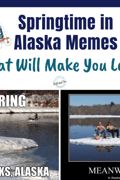 Springtime in Alaska Memes that will make you laugh out loud #alaskamemes #springmemes #memes