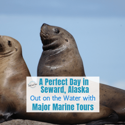 A Perfect Day in Seward, Alaska Out on the Water with Major Marine Tours
