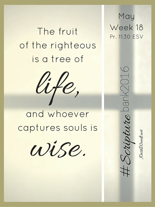 The fruit of the righteous is a tree of life, and whoever captures souls is wise.