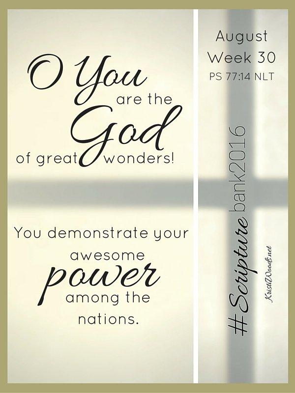ScriptureBank16 Week 30