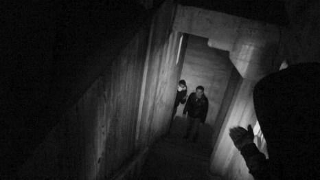 Shadow (13)
