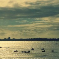 Leanne Faulkner's lake, mindful walking