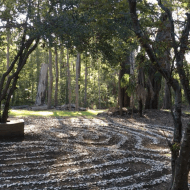 Canisius Labyrinth: an Attention Restoration Meditation (2 minutes)