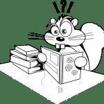 surprised-squirrel-304021_1280-pixabay