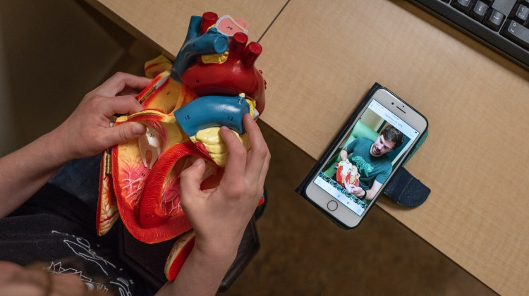 A boy uses a 3D heart model while watching a video.