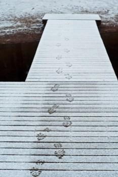 jalanjäljet