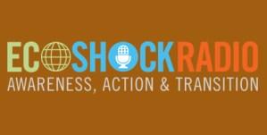 radioEcoShockLG