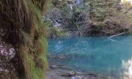 Kirándulás a Risnjak Nemzeti Parkban  – A Kupa folyó forrásához