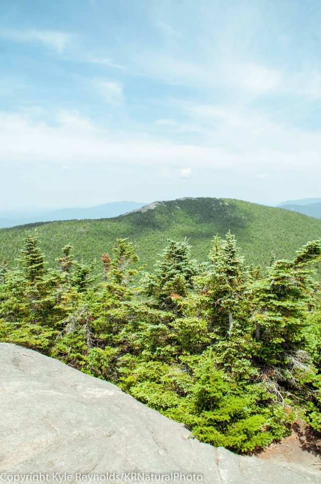 Porter Mountain_July 16, 2018_35