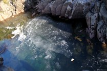 unser schwimmender Stein
