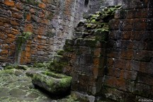 unfortunately Hermitage Castle lacks a roof...