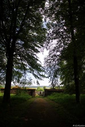ein kleiner Waldfriedhof, eine schöne letzte Ruhestätte
